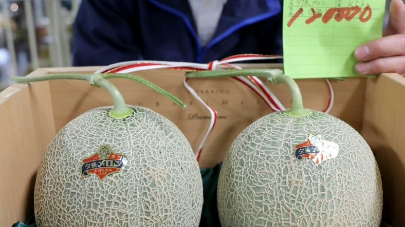 A Pair of Premium Japanese Melons.afp