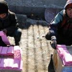 Virus Wipes Away Afghan Toilet-Paper Maker's Expansion Plans