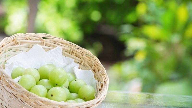Amla Berries