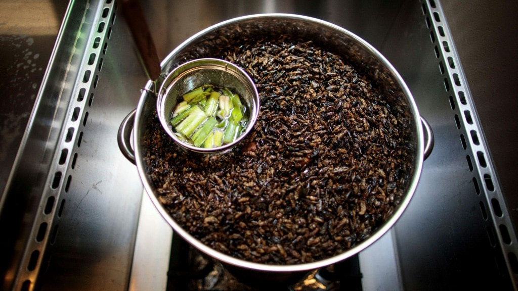 An Insect Cuisine Restaurant in Tokyo.afp