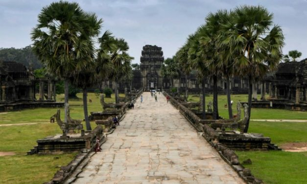 Saving Angkor Wat: Cambodia's Ninja Gardeners Tame Jungle Growth