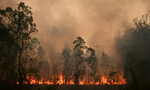 Australia Volunteer Firefighter Charged With Setting the Catastrophic Bushfires