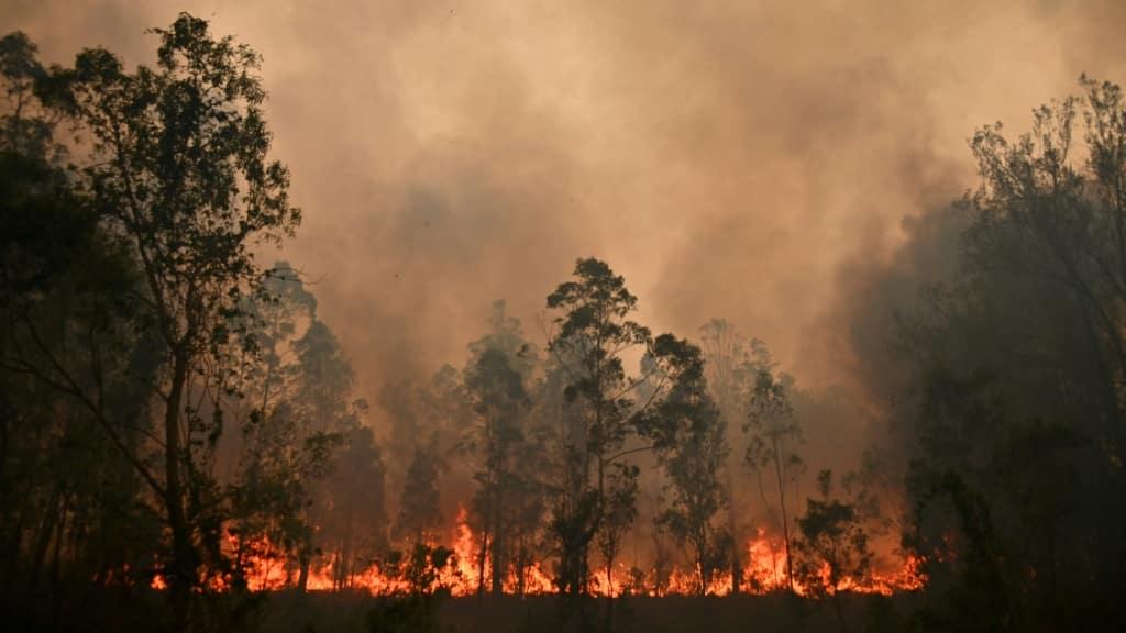 Australian Fire ©AFP