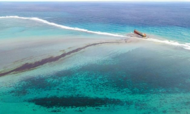 Mauritius Races to Clean Up Massive Oil Spills