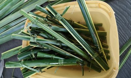 Philippine Café Uses Coconut Leaves as Straws