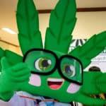 Bangkok Marijuana Clinic Handout Free Cannabis Oil
