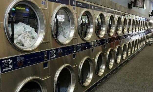 Laundromat Cat Killer Sentenced for 34 Months