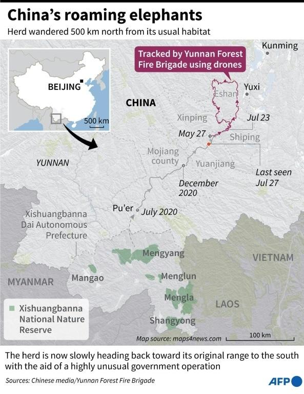 China's Roaming Elephant