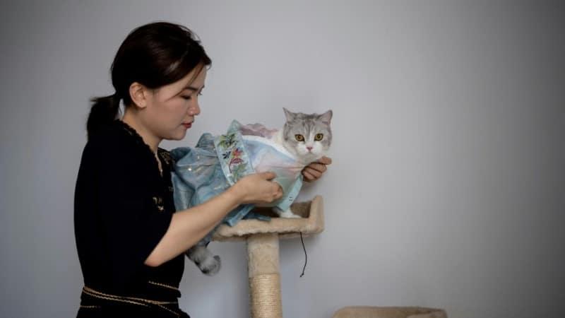 Chinese Designer Wu Qiuqiao