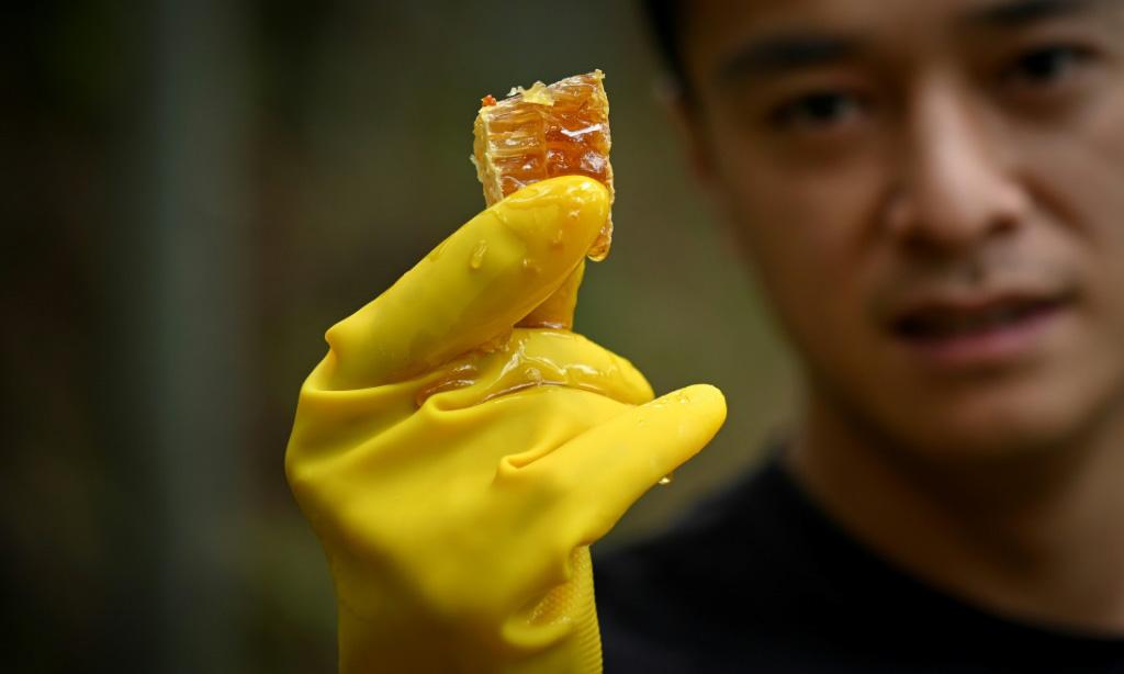 Chinese Honey Farmer China.afp