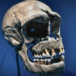 People with Neanderthals DNA Can Make Covid-19 More Severe