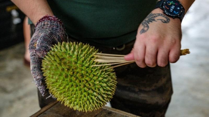 Durian Trade in Malaysia