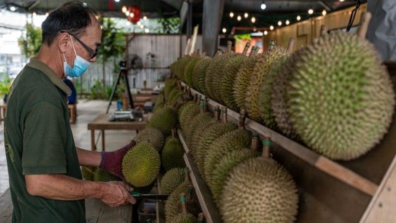 Durians in Kuala Lumpur