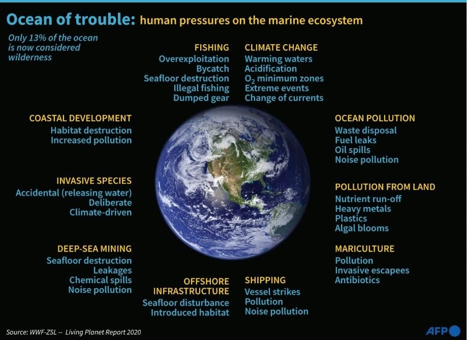 Environmental Degradation of the Oceans