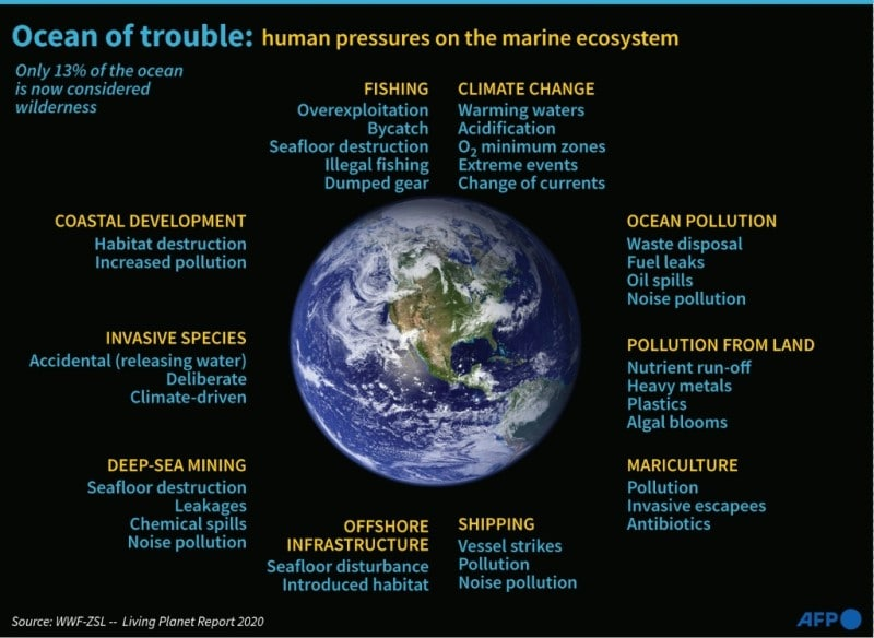 Environmental Degradation Caused by Human