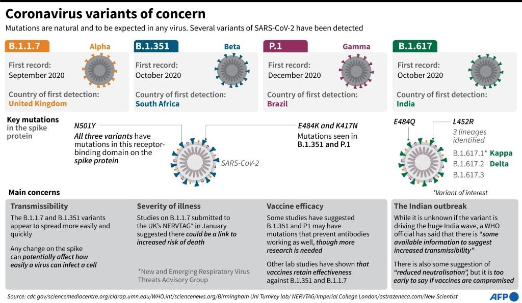 Factfile on SARS-CoV-2 Variants