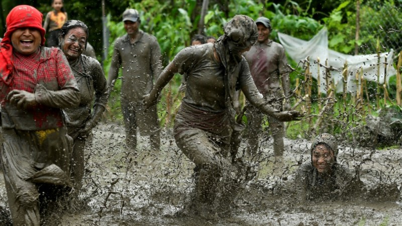 Farmers Dance and Mud Sling.afp