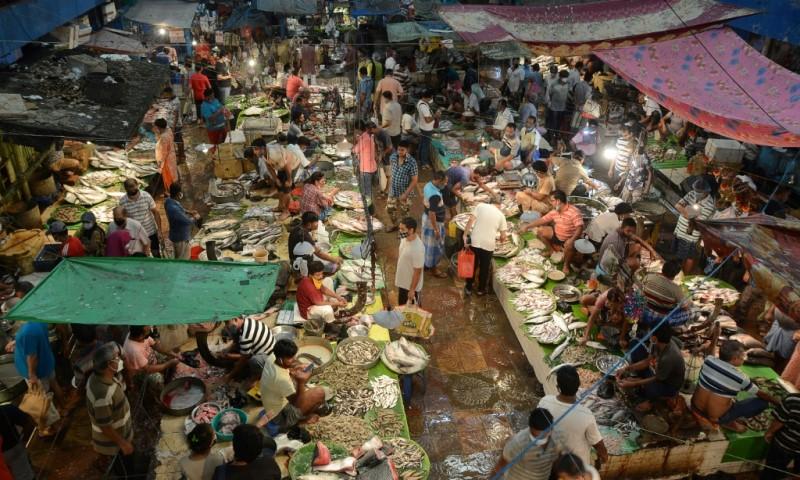 Fish Market in Kolkata