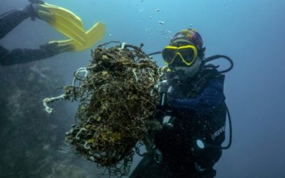 Deadliest Catch: Thailand's 'Ghost' Fishing Nets Help COVID Fight