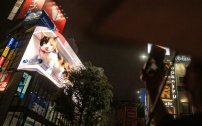 Picture Purrfect: Giant 3D Cat Draws Tokyo Crowds