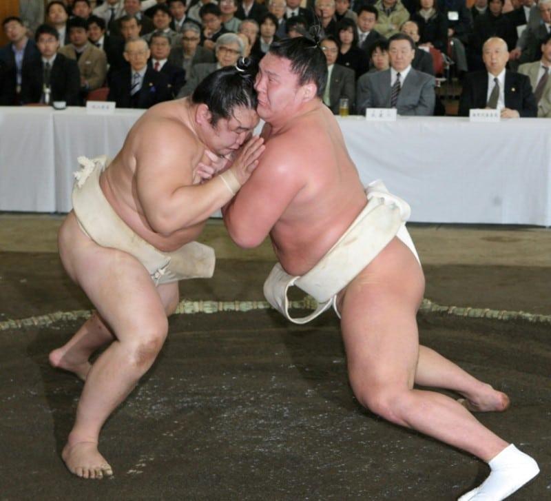 Hakuho Wrestling