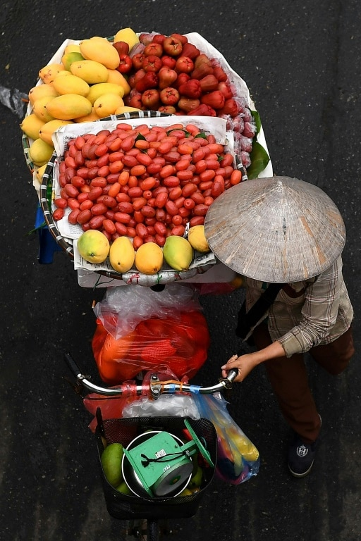 Hanoi's Fruit Vendors