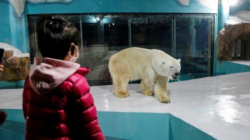 Harbin Polar Land