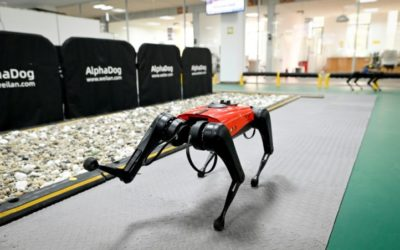 AlphaDogs: The Next Generation Robo-Dogs that can be Updated with New Skills