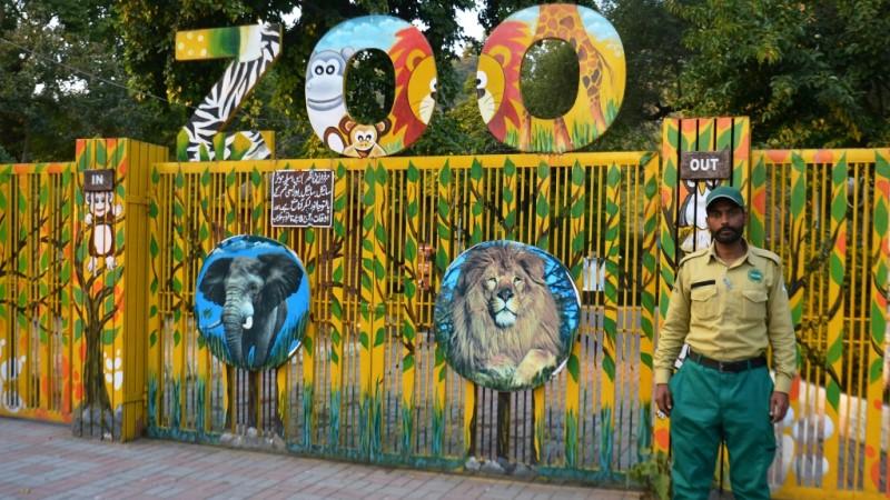 Islamabad Zoo Rehabilitation