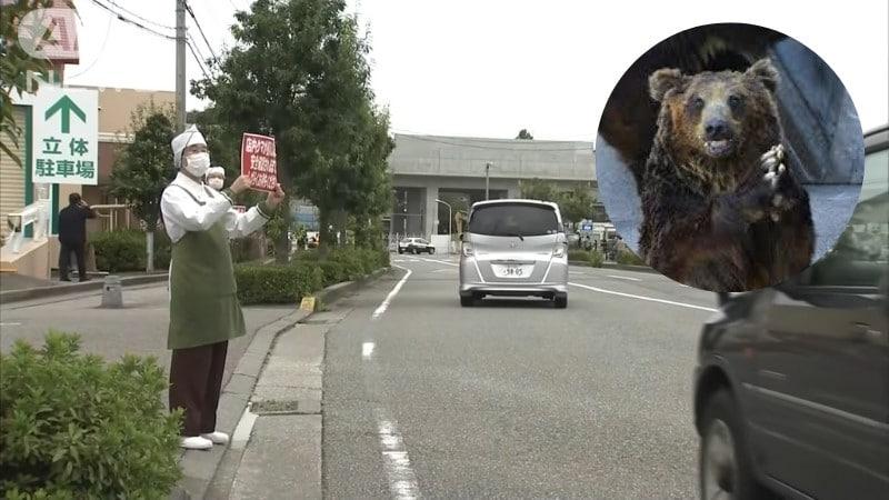 Japan Bear Attack - Screenshot