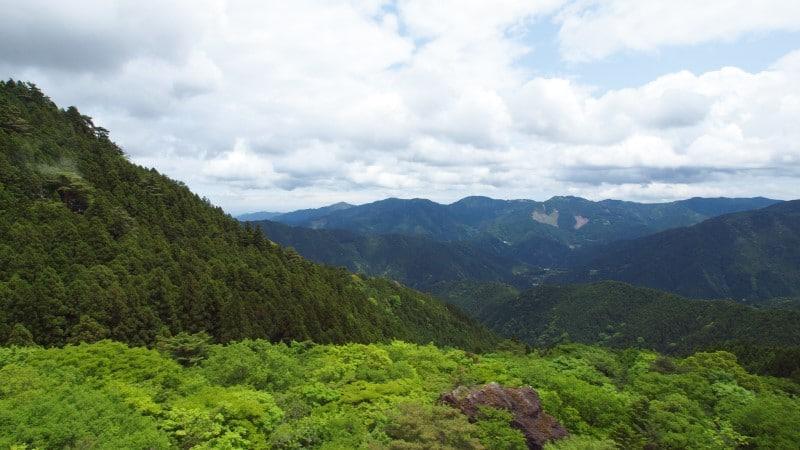 Kamikatsu, Yamainukake ©Yuki Shimazu