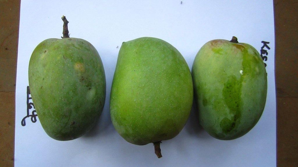 Kesar Mangoes - Vitamin Green