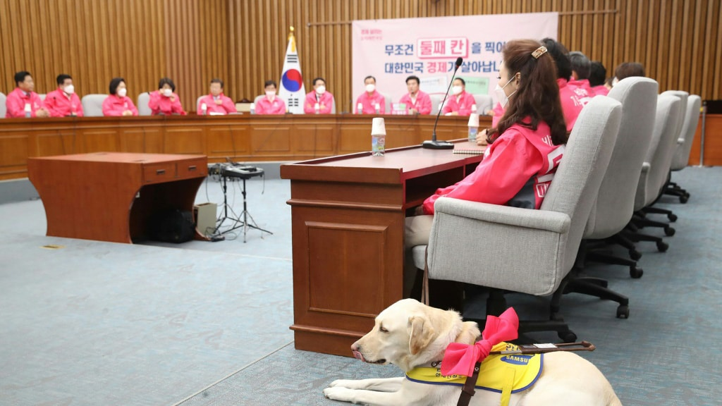 Kim Ye-Ji and Her Guide Dog Joy.afp