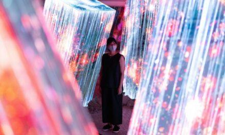 Japan Forest Lights Up in Digital Art Show