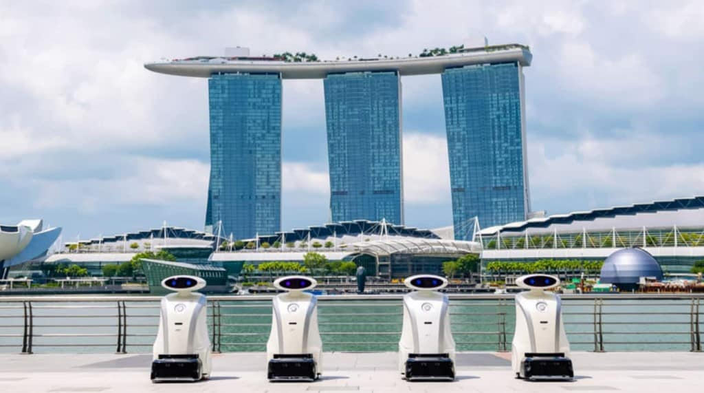Lionsbot Singapore ©Lionsbot