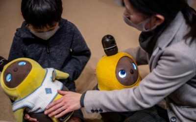Hi, Robot: Japan's Android Pets Ease Virus Isolation