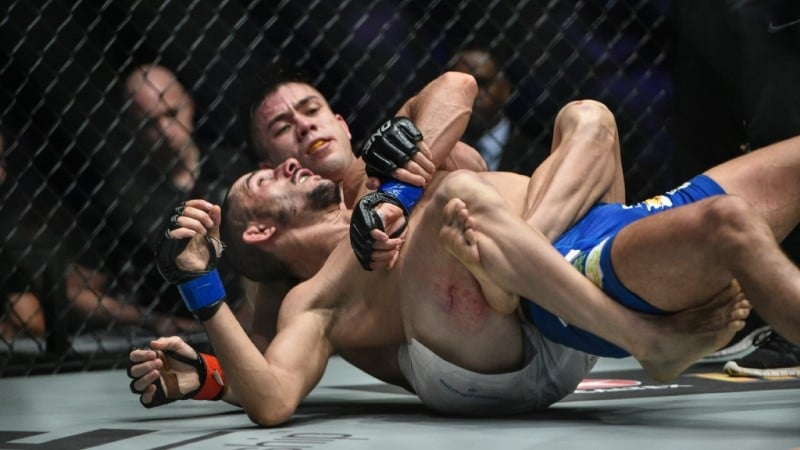 Mark Striegl in UFC