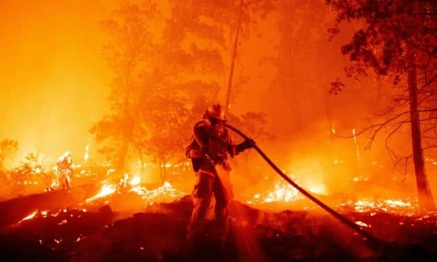 2020 One of Three Hottest Years Ever Recorded
