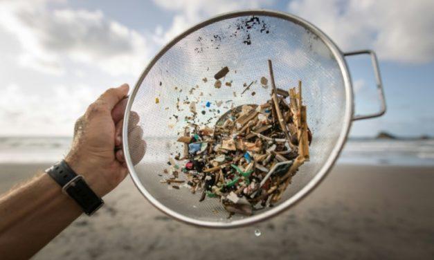 14 Million Tons of Microplastics Sitting on Seafloor