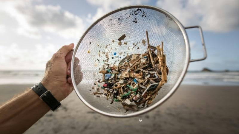 Microplastics and Mesoplastic Debris