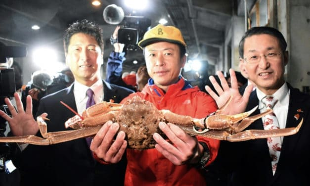 World's Most Expensive Crab Priced at $46,000 in Japan Auction