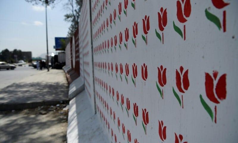 Omaid Sharifi's Colourful Murals