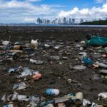 Coca Cola Plastics Tops the List on World Clean Up Day