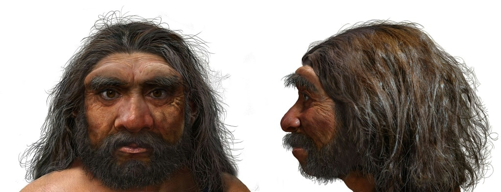 Portrait of Homo Longi, or Dragon Man