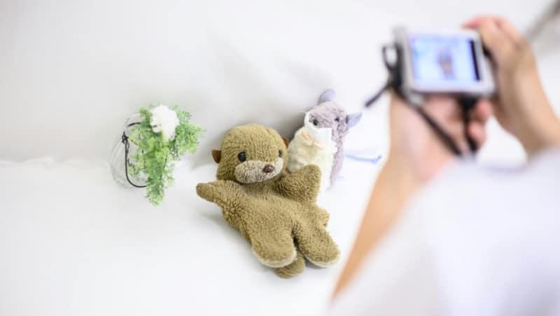 Restoring Much-loved Teddies