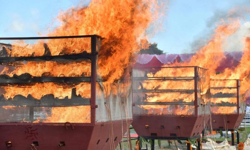 Rhino Horns in Flames