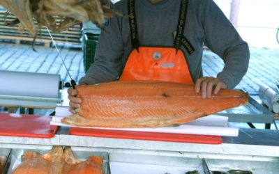 Norway Wants to Resume Salmon Export to China