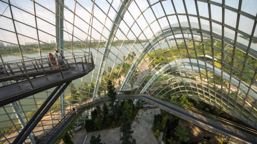 Singapore - The Garden