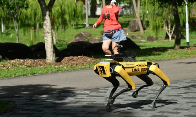 Singapore Robot Dog Assist in Social Distance Patrol