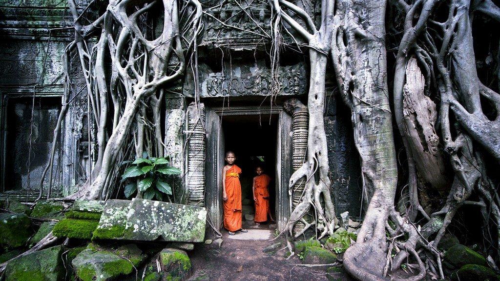Ta Prohm - Cambodia -